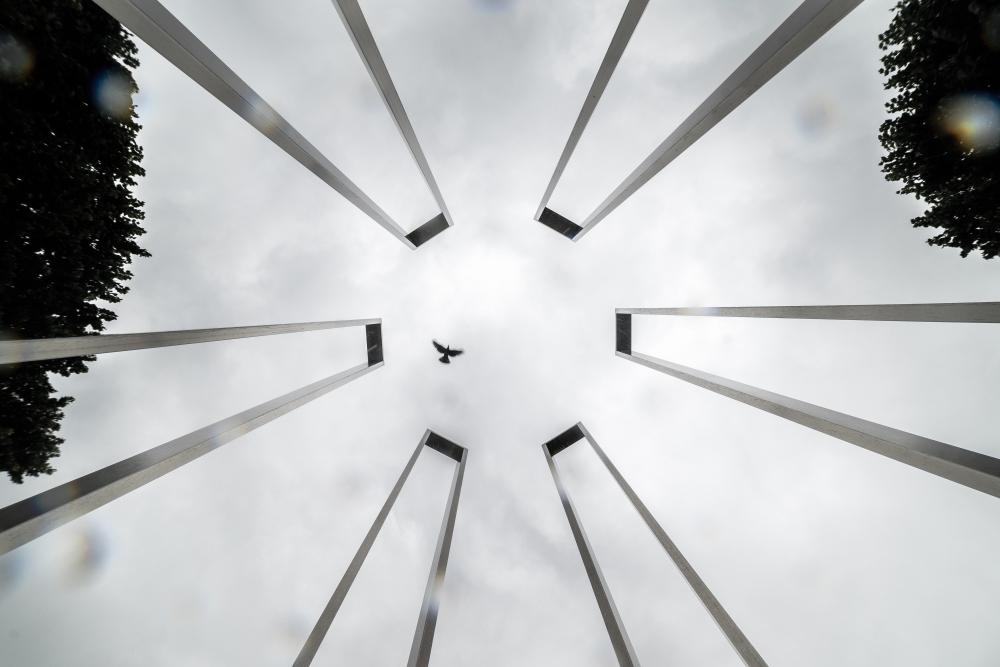 Etienne regis, photographe toulouse, exterieur, architecture, oiseau, bird, lines, lumiere naturelle, cercle, circle, sky, ciel