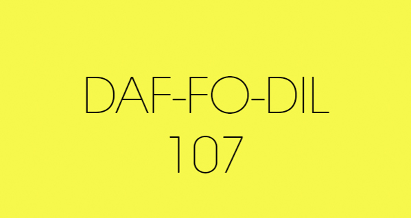 daf fo dil 107 fond papier BD location Studio Photo/video Lyon