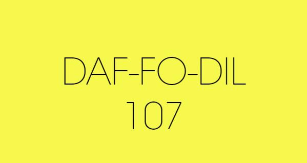 daf fo dil 107 fond papier BD location Studio Photo/video Lyon