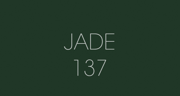 Jade 137 fond papier BD location Studio Photo/video Lyon