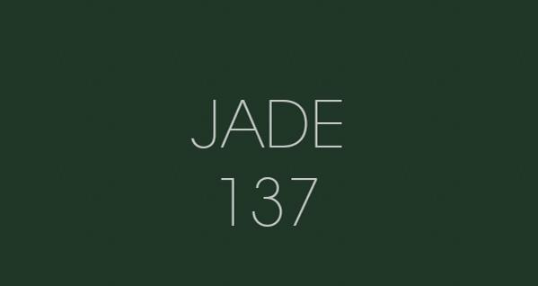 Jade 137 fond papier BD location Studio Photo/video Lyon